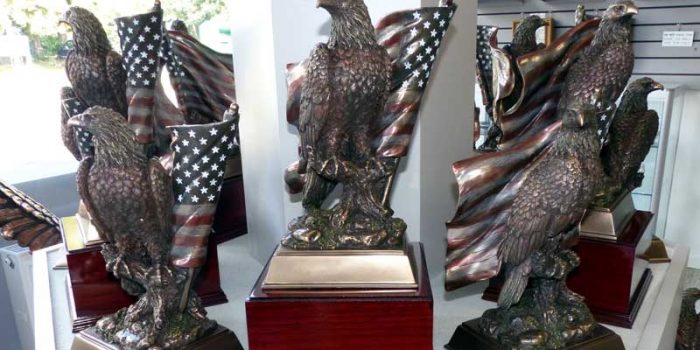 Eagle US Flag Eagles highest quality only at the Trophy Center Trophy Shop Frame Shop Coins Embroidery Guidons Awards Plaques