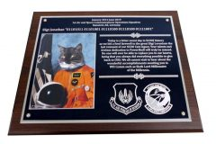 1-ASOC-USAFE-Plaque-0719