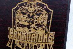 53rd-Signal-Centurions-Logo