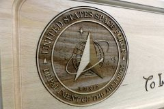 USSF-US-Space-Force-Logo-03